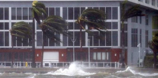 Florida'da kasırgada 4 kişi öldü