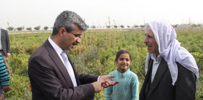 SGK Başkanı pamuk tarlasında çocuk işçi aradı