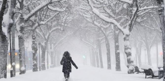 Meteoroloji Genel Müdürlüğü & AKOM uyardı! Kar ne zaman yağacak?