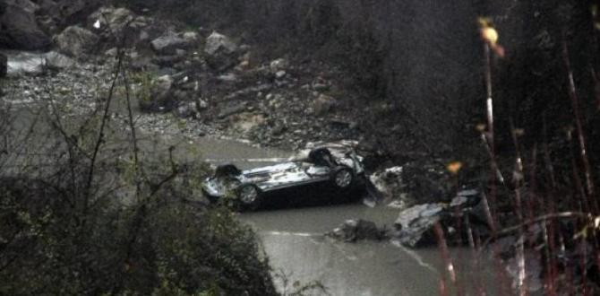 Otomobil, dereye uçtu: 2 yaralı