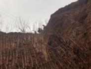 Elazığ'da kaçak kazı yapan 3 defineci yakalandı